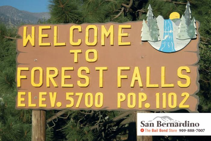 Forest Falls Bail Bonds