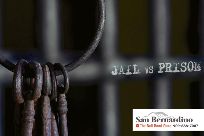 Phelan Bail Bonds