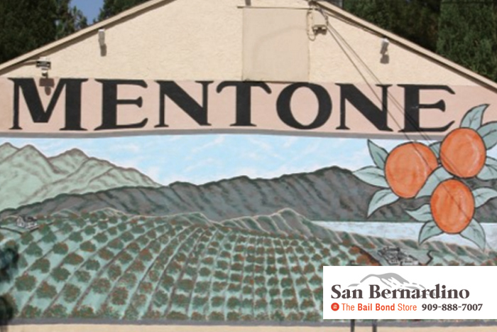 Mentone Bail Bonds