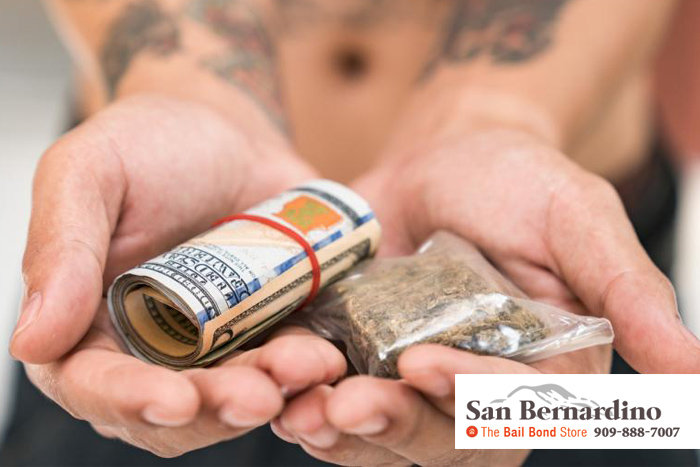 california marijuana sales law